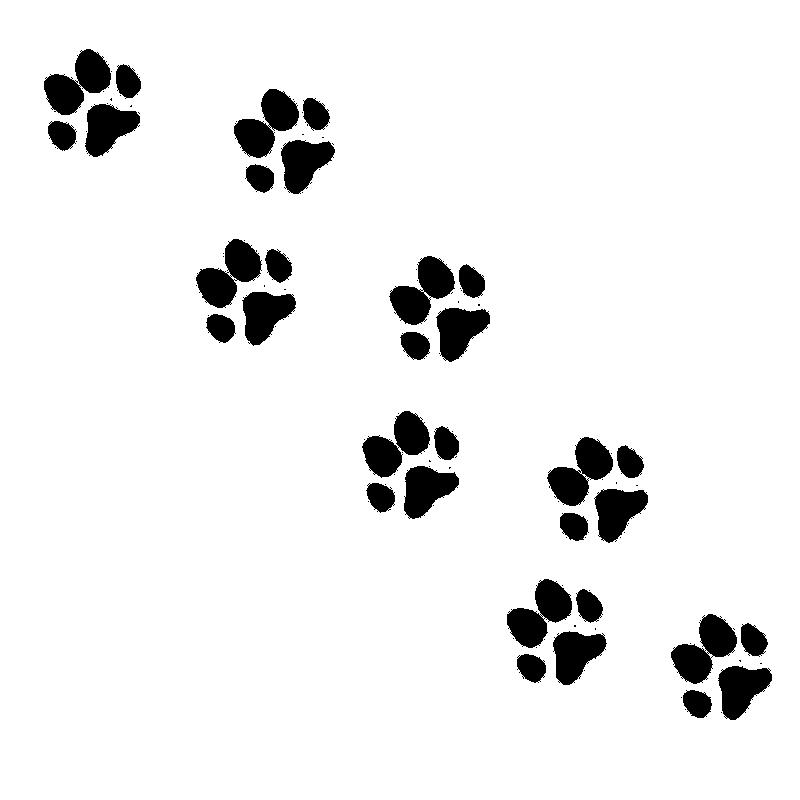 猫の足跡のイラスト