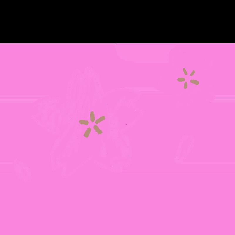 色鉛筆で描いたような桜のイラスト