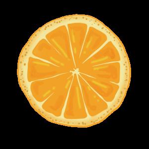 オレンジの輪切りのイラスト