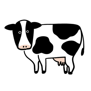 こちらを向いている乳牛のイラスト