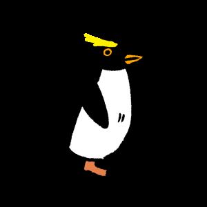 イワトビペンギンのイラスト