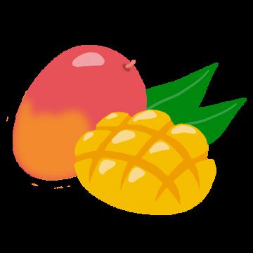 マンゴーの手描きイラスト