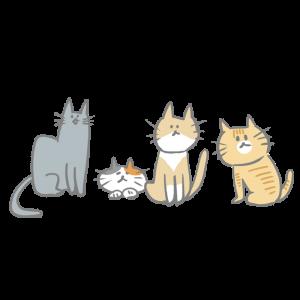 猫が集まっているイラスト