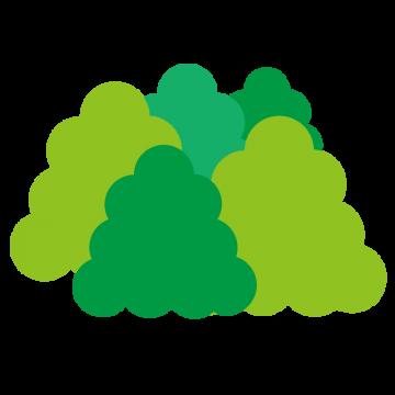 森にある木々のイラスト