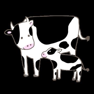 牛の親子のイラスト