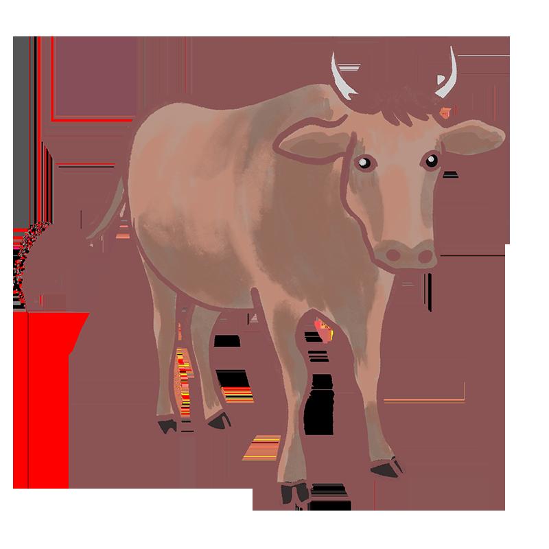 茶色い雄牛のイラスト