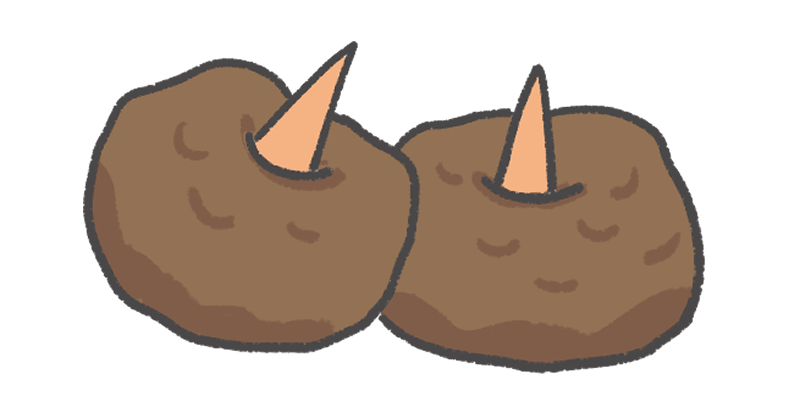 こんにゃく芋のイラスト