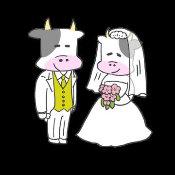 ウエディングの男女風の牛のイラスト