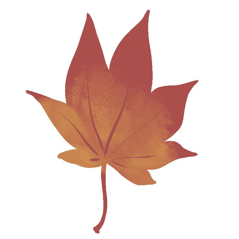 エゾヤマザクラの葉の紅葉のイラスト