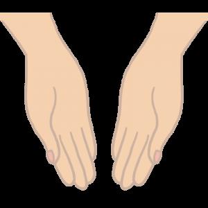 両手を差し出しているイラスト