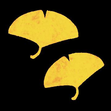 紅葉したイチョウのイラスト