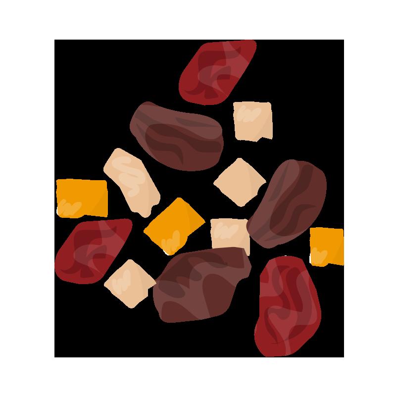 いろいろなドライフルーツのイラスト