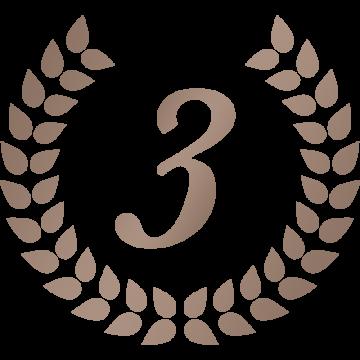 シンプルな月桂樹の3位アイコンのイラスト